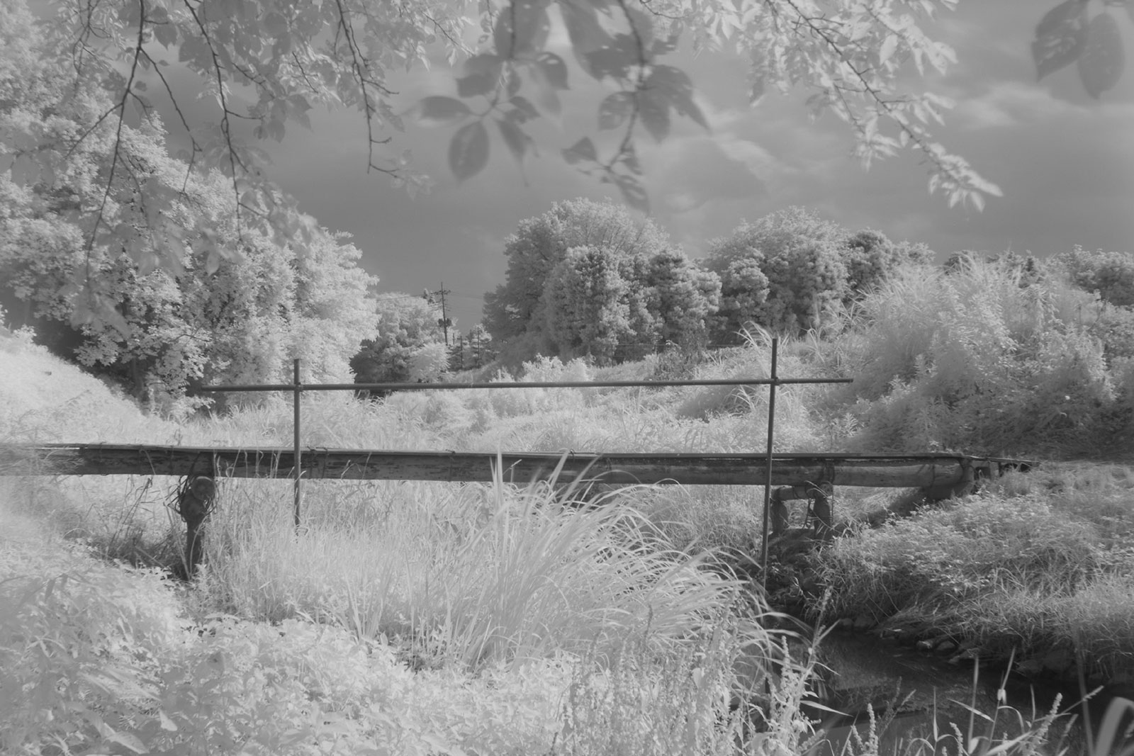 With Kenko INFRARED R72